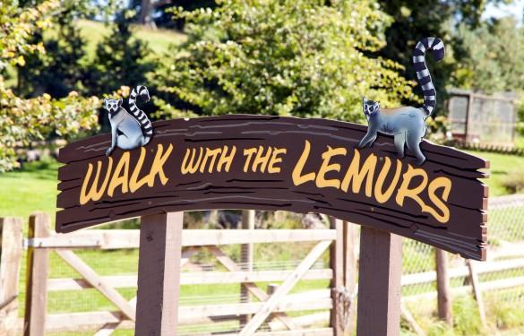 Longleat Safari Park - walk with the lemurs 5 -The Grain - Theme Park Signage
