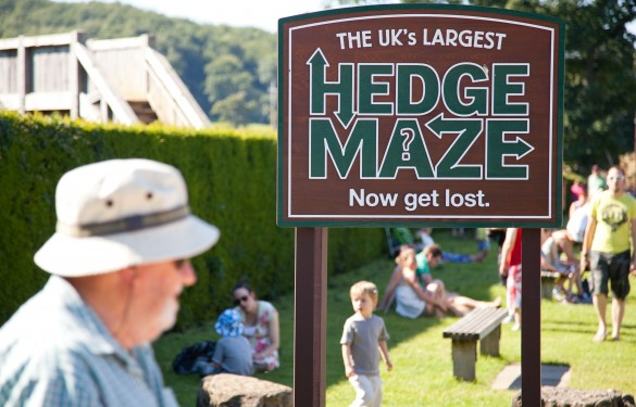 Hedge Maze Sign